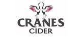 Cranes Drinks - Logo