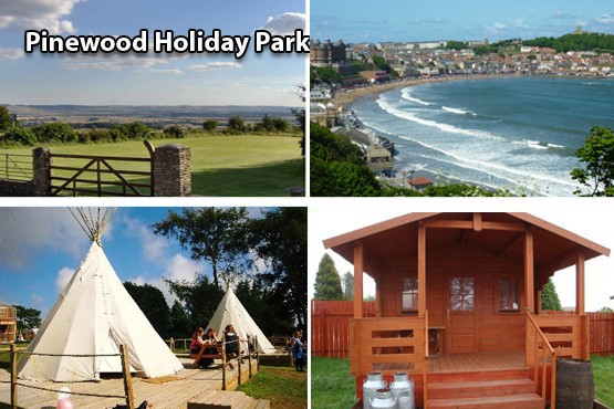 £59 instead of £140 for a 2 nt glamping in either a tipi or cowboy camping shack for up to 4 with Pinewood Holiday Park, Scarborough – save 58%