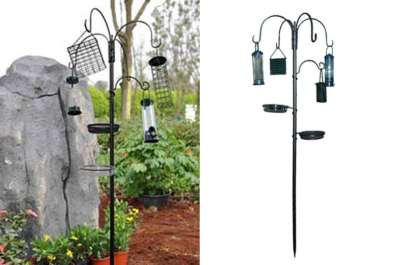 Bird Feeding Station & Water Bath for £10.99