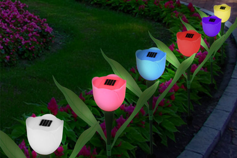 Solar-Powered Garden Tulip Lights – 3 Options!