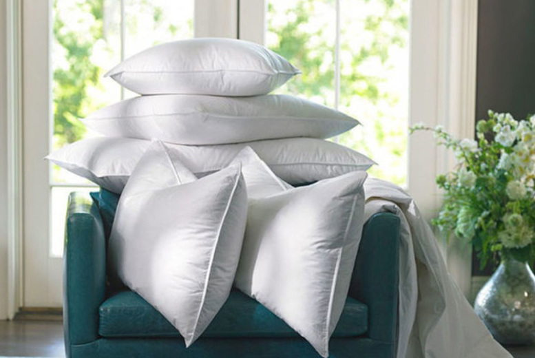 4 Goose Feather & Down Pillows for £16