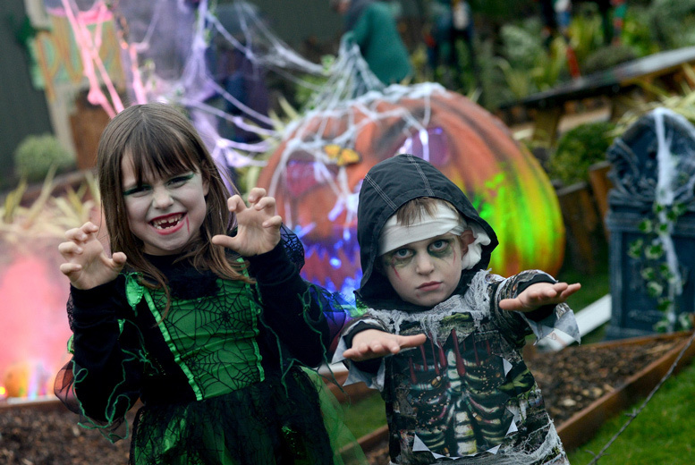 £16 instead of £31 for two adult tickets to a Halloween Safari Experience, or £26 for a family ticket for four people at Yorkshire Wildlife Park - save up to 48%