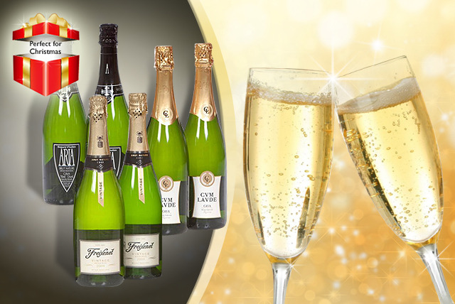 £59.90 instead of £126.59 (from San Jamón) for 6 bottles of high-quality Spanish cava - save a sparkling 53%