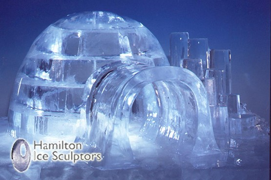 £59 instead of £150 for a half day ice sculpting masterclass, or £100 for 2 people at Hamilton Ice Sculptors, Earlsfield – save up to 61%