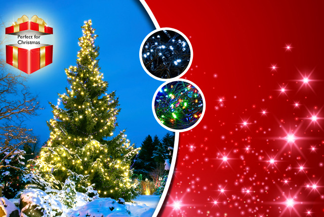 £8 instead of £30 (from ledlive.co.uk) for a set of 100 blue, white or multi-coloured LED fairy lights, £11 for 200, £18 for 300 - save up to 73%