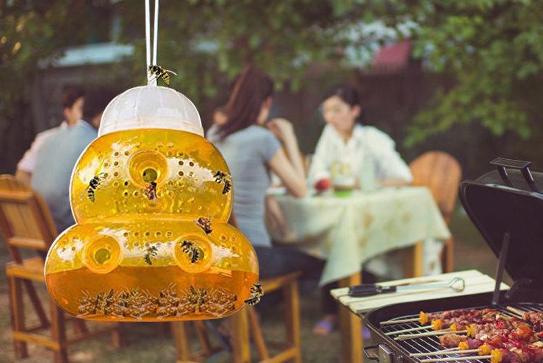 Hanging Honey Pot Wasp Trap