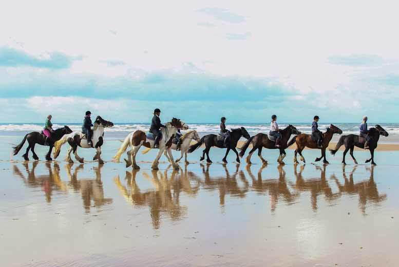 £24 for a horse riding beach trek for one person or £39 for two from Murthwaite Green Trekking Centre - save up to 52%
