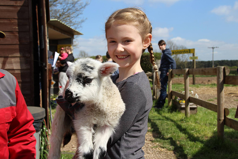 £3 for entry for one adult and one child ticket to Boston Park Farm with two bags of animal feed each, or £5 for two adults and two children - save up to 40%