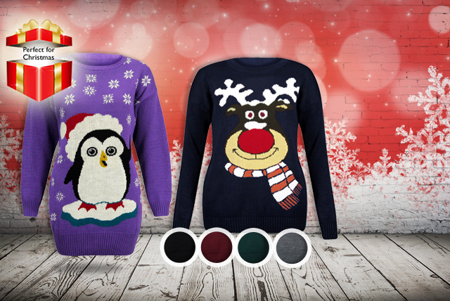 £12 instead of £23.99 (from Something About Fashion) for a Christmas jumper in a choice of 12 designs - save 50%