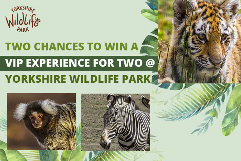 Activities: WIN a VIP Experience for 2 at Yorkshire Wildlife Park - 2 Chances to Win!