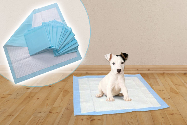 From £9.99 for 50 puppy training pads, or from £16.99 for 100 puppy training pads - choose from three sizes and save up to 75%
