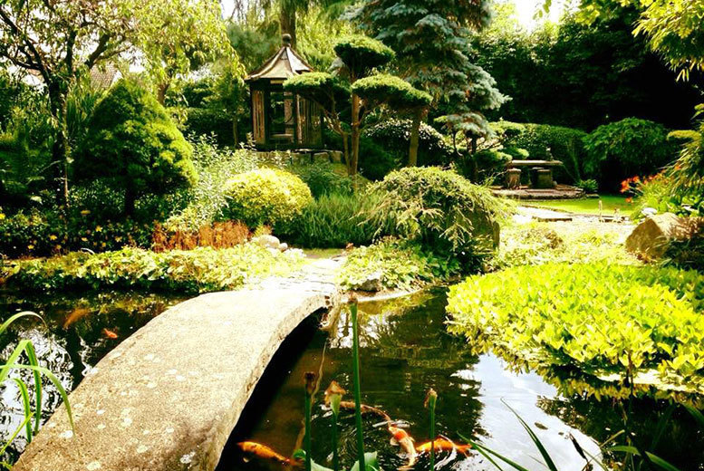 Activities: Pure Land Japanese Garden Entry for 2