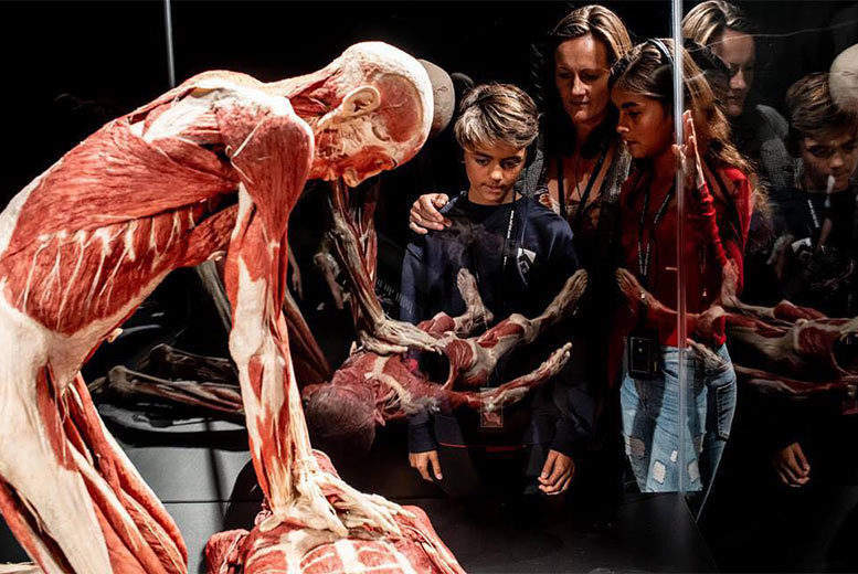 Entertainment: BODY WORLDS London The Museum Experience, Piccadilly Circus