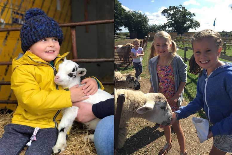 Activities: Maize Maze & Farm Entry for 2 or Family of 4 @ Boston Park Farm