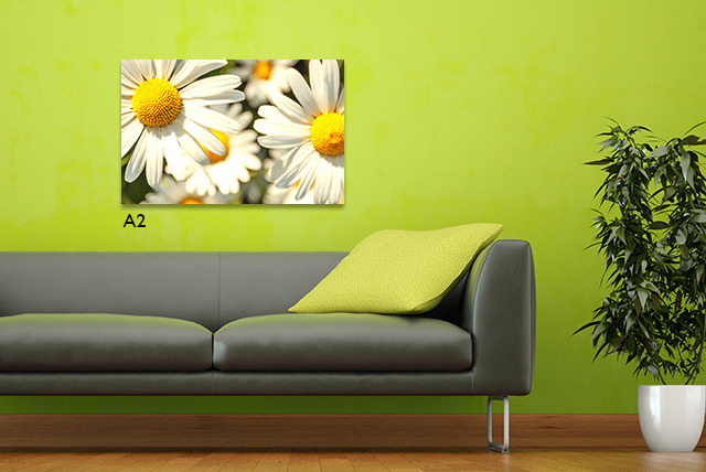 """£10.99 instead of £54.99 (from Dip Into Sales) for a 16"""" x 24"""" A2 personalised canvas - print your memories and save 80%"""