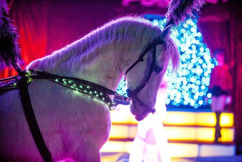 Entertainment: 2 Circus Gerbola Tkts - Templemore or Carlow