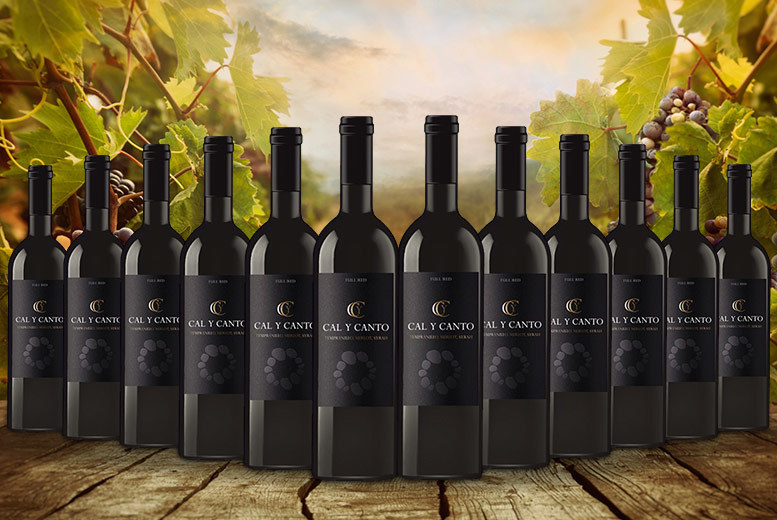 £39.99 instead of £175.55 (from Eassy Gifts) for a 12-bottle case of award-winning Spanish red wine - save 77%