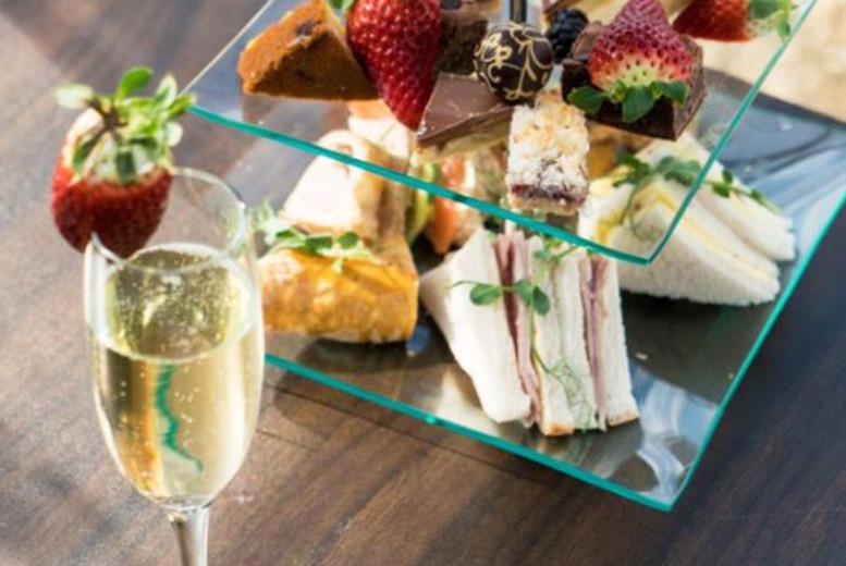 Restaurants & Bars: Afternoon Tea, Vineyard Tour & Wine Tasting @ Holmfirth Vineyard