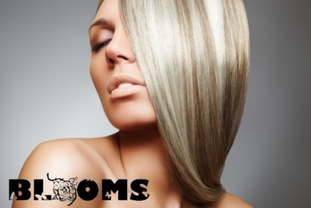 £37 instead of £135 for a half head of highlights, a wash, cut, deep conditioning treatment & blow dry finish at Blooms Hair – save 73%