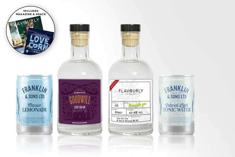 Gin Hamper inc. 2 Gins, Tonics, Snack & Magazine!