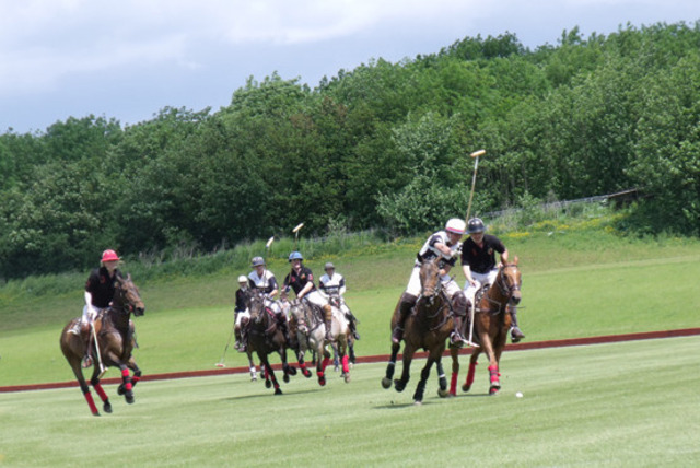 £99 instead of £220 for a 2-day luxury polo retreat inc. coaching & accommodation, or £179 for 3 days at Leadenham Polo Club - save up to 55%
