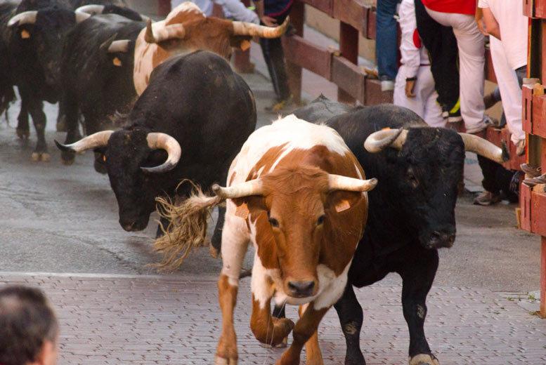 European City Breaks: Historic Pamplona Bull Running Festival, 4* Hotel & Flights
