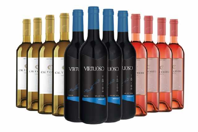 12 Bottles of Luxury Spanish Wine - Red, White & Rose!
