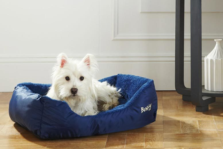 £6 (from Bunty Pet Products) for a small deluxe dog bed, £8 for medium, £10 for large, £12 for XL or £14 for XXL