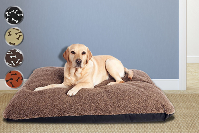 £8.99 instead of £24.99 (from Groundlevel.co.uk) for an extra soft bone-print pet bed - pick from 4 designs and save 64%