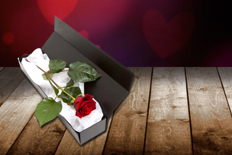 £9.99 instead of £19.99 (from Flowers & Plants Direct) for a red rose in a box with a box of chocolates - save 50% + DELIVERY IS INCLUDED