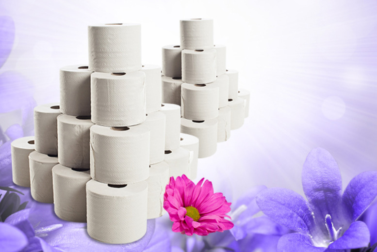 £9.99 instead of £23.99 for a 60-pack of 2 ply toilet rolls, £29 for a 120-pack from Wowcher Direct - save up to 58%