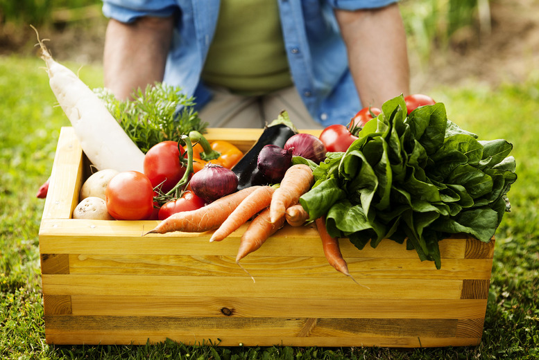 £9.50 instead of £15.99 for a winter veg box including 7 seasonal vegetables from Parsnips and Pears, Nottingham - save 41% + delivery is included!