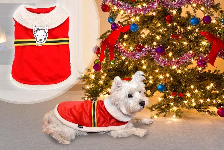 From £3.99 (from Bunty Pet Products) for a Santa Claus dog outfit - choose from four sizes and save up to 33%