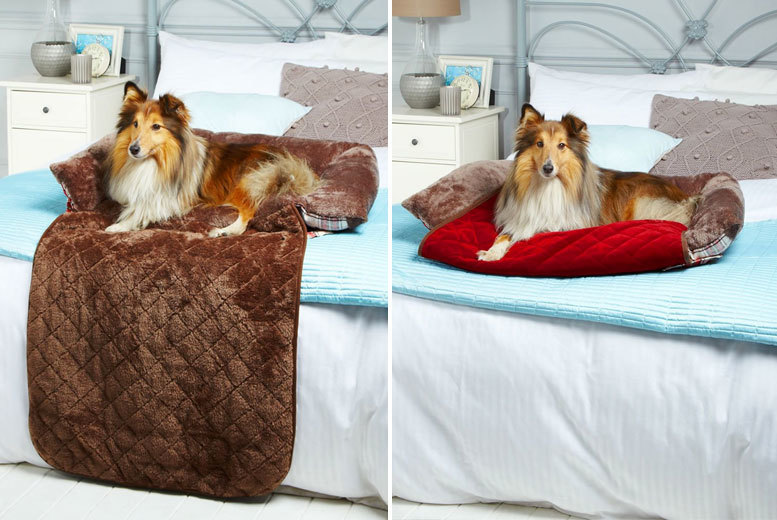 From £9.99 (from Bunty Pet Products) for a soft tartan dog bed - choose from brown and red in three sizes and save up to 29%