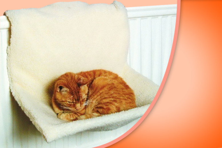£8.99 instead of £22.99 (from London Exchainstore) for a radiator bed for small cats and small dogs - save 61%