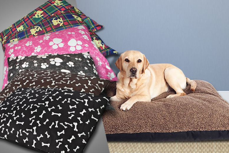 £8.99 instead of £24.99 (from Groundlevel.co.uk) for an extra soft bone-print pet bed - pick from 6 designs and save 64%