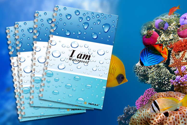 £6.99 (from Parax Paper) for 4x A6 eco-friendly waterproof notebooks, £8.99 for 6