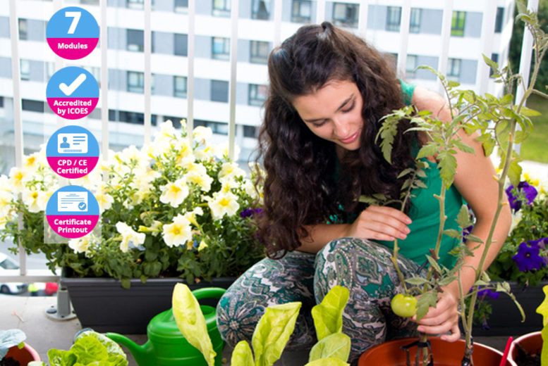 £10 (from International Open Academy) for a growing food in small gardens course!