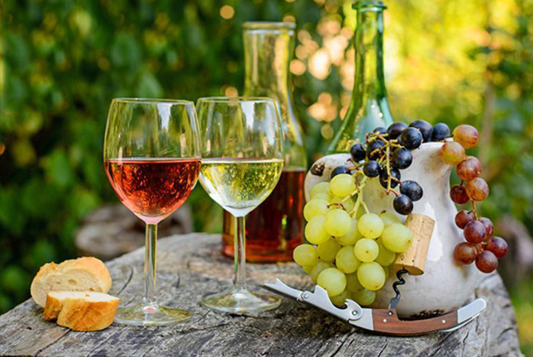 £24 instead of up to £34 for a vineyard tour and tasting session for two people from Activity Superstore - choose from three locations and save up to 29%