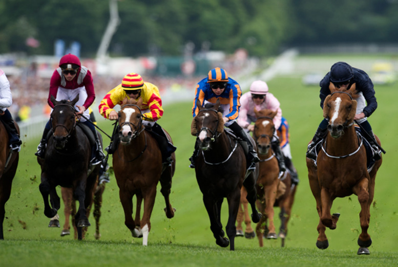 £174 for a Ladies' Day hospitality ticket to the Investec Derby Festival, or £205 for a Derby Day ticket from Epsom Silks Hospitality - save up to 31%