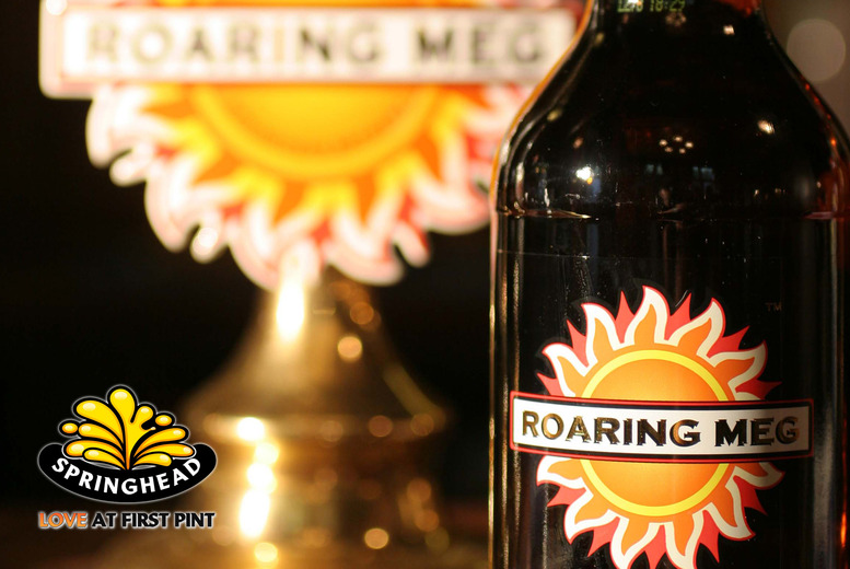 £7.50 instead of £15 for a brewery tour for 2 inc. 3 pints of beer each, £14 for 4 people at Springhead Brewery, Laneham - save up to 50%