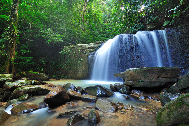 £799pp (from Inspired Challenge) for an 11-day Malaysian jungle a