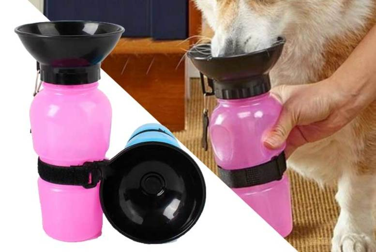Image of 2-In-1 Portable Pet Bowl And Bottle | Grey | Living Social