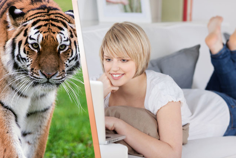 £39 instead of £199 (from My Distance Learning College) for an online Zoology course - save 80%