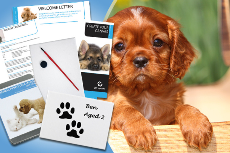 £6.99 instead of £14.99 for a 'Pet Paw Prints' on Canvas Gift Set from Wowcher Direct - make a funky canvas with your pet's paw prints & save 53%