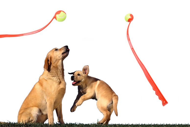 Image of Dog Toy Ball Launcher   Living Social