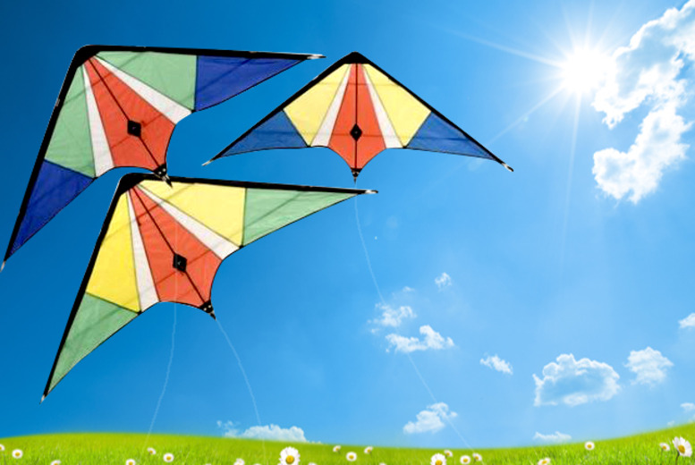 £6 instead of £14.99 (from London Exchainstore) for a large stunt kite - learn tricks and save 60%