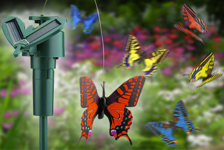 £6 instead of £12.99 (from London Exchainstore) for a solar butterfly, or £10 for two - save up to 54%