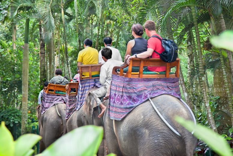 From £499pp (from THG) for a 7-day tour of Bali inc. dolphin watching, elephant trekking, food and accommodation - save up to 24%