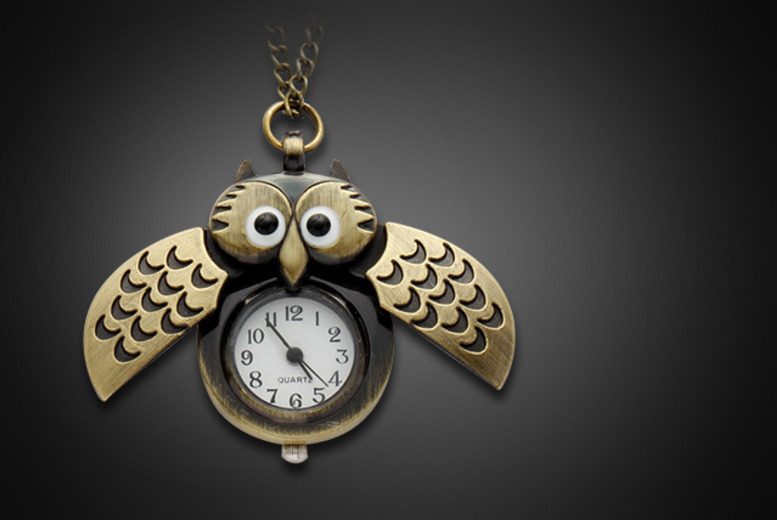 £7 instead of £24.99 (from Brendee) for a steampunk owl clock necklace - have a hoot and save 72%